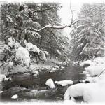 Snow Brook